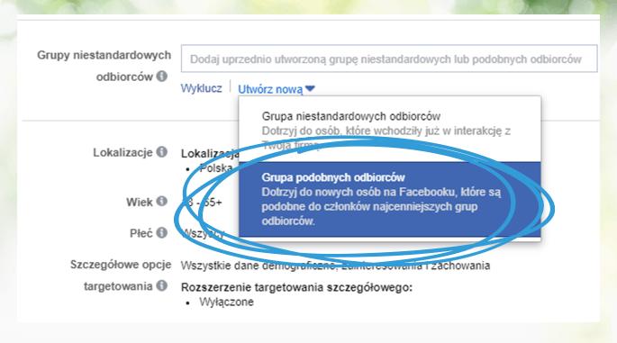 Sklep na Facebooku - grupy podobnych odbiorców